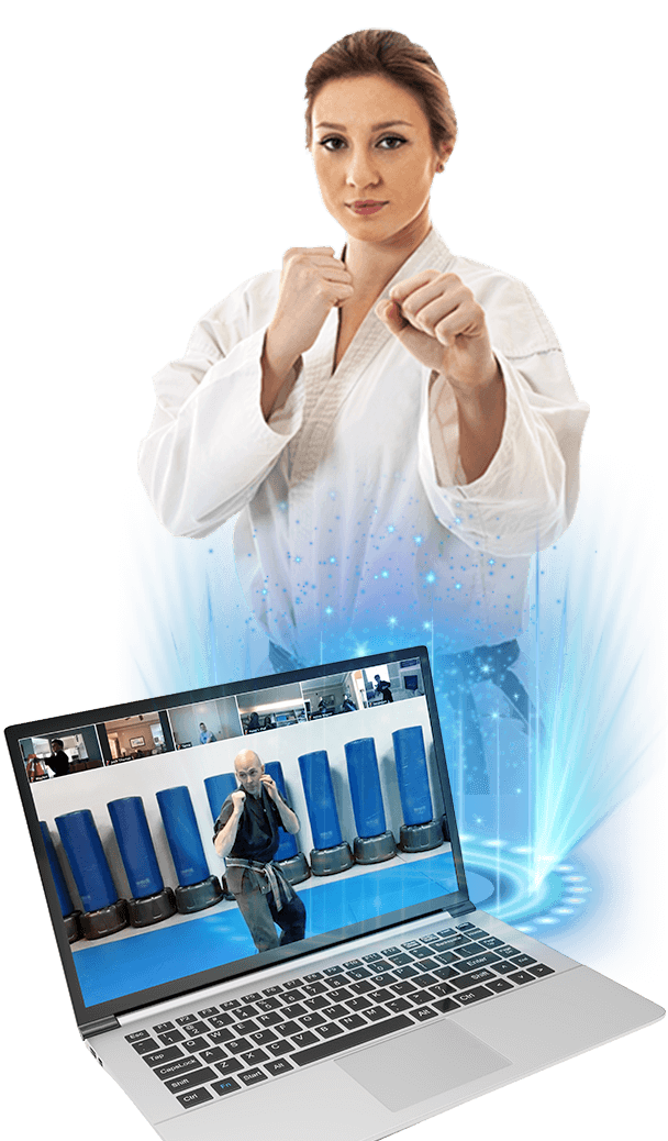 adult Karate Taekwondo Fitness Martial Arts virtual